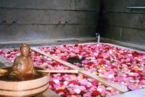 湯平温泉の効能